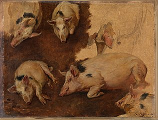 Study of six Pigs