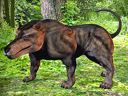 Andrewsarchus mongoliensis3d.jpg
