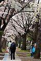 Aoyama Cemetery (3456515774).jpg