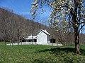 Apple blossoms frame the main farmhouse. (2fe02ea8-bc90-4b2d-a0c6-e3ef591fdfb5).JPG