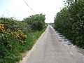 Approach to Sea Palling on Clink Road - geograph.org.uk - 801585.jpg