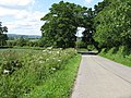 Approaching the Main Road - geograph.org.uk - 1349898.jpg