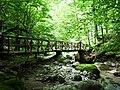 Apriltzi, Bulgaria - panoramio (39).jpg