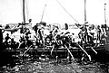 Arab pearl divers in the Persian Gulf.jpg