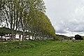 Arenys de munt-can jalpi (12).JPG
