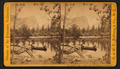 Artistic studies on Mirror Lake. Mt. Watkins in the distance, by E. & H.T. Anthony (Firm).png