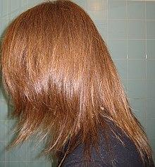 Couleur des cheveux wikipedia