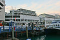Auckland New Zealand-245.jpg
