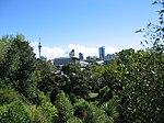 Auckland downtown.jpg