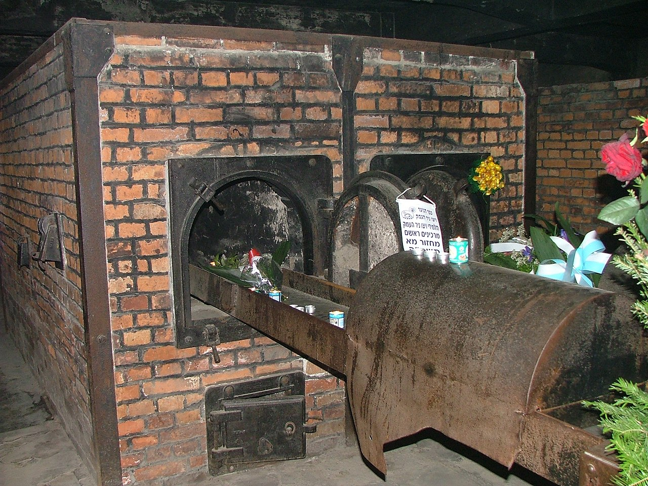 Auschwitz - Poland (74210732).jpg
