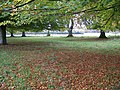 Autumn comes to Eastbury - geograph.org.uk - 1027703.jpg