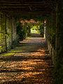 Autumn in the trellises (8117538864).jpg