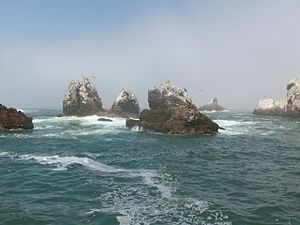 Palomino Islands (Peru)