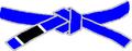 BJJ Blue Belt.PNG