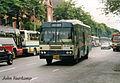 BMTA-BUS-39 Padane.jpg