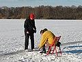 BS Bienroder See Winter.JPG