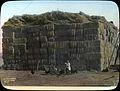 Baled hay (3708639626).jpg