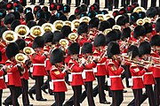 Massed Bands of the Foot Guards, 16 June, 2007