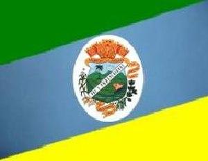 Palmital, Paraná - Image: Bandeira.palmita
