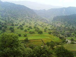 Gachsaran County - Barabar around the Gachsaran city, early spring