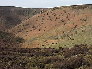 Long Mynd - Barristers Batch on the eastern flank of the Long Mynd