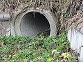 Batracoduc Auneuil.jpg