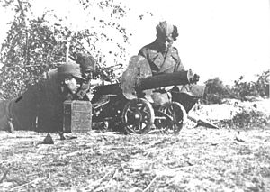 Battle of Odžak 1945.jpg