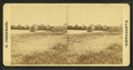 Beach view with houses in the distance, by Freeman, J. (Josiah).png