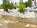 Benidorm - Parque de Elche 5.jpg