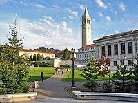 Berkeley glade afternoon.jpg