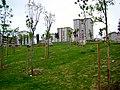 Beylikdüzü Yeşil Vadi-Yaşam Vadisi Botanik Şehir Parkı Nisan 2014 - panoramio (4).jpg