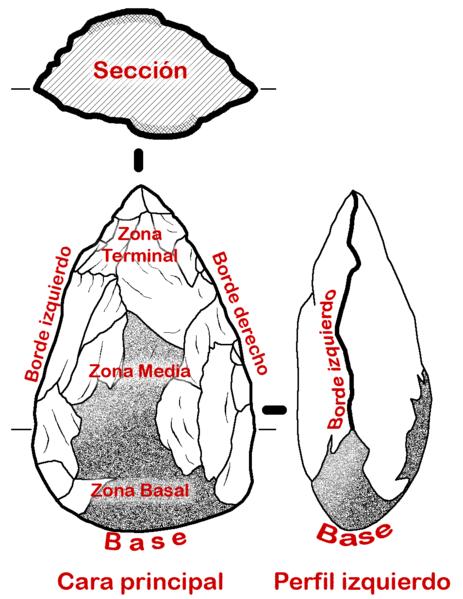 Esquema de los elementos de un bifaz achelense