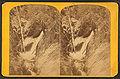 Birch Falls, by Hillers, John K., 1843-1925.jpg