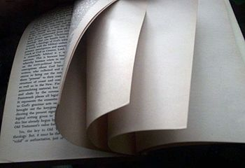 Image result for blank page in book