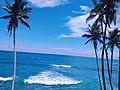 Blue Sea Mirissa Sri Lanka 01.jpg
