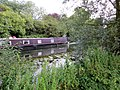 Boating on the River Nene - August 2012 - panoramio.jpg