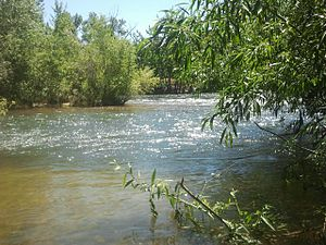 Boise River - Boise River