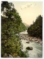 Borrowdale Birches, II., Lake District, England-LCCN2002696844.tif