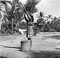 Boslandcreoolvrouw die olie uit de pitten van de Maritapalm stampt, Bestanddeelnr 252-5887.jpg