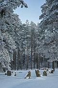 Brakelund Burial Ground 2.jpg
