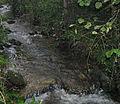 Bresnička reka 3.JPG
