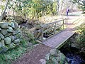 Bridge on the Rockcliffe - Kippford path - geograph.org.uk - 1102572.jpg