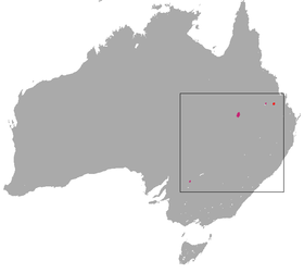 Bridled Nail-tail Wallaby area.png