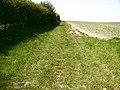 Bridleway to Cadeby - geograph.org.uk - 418502.jpg