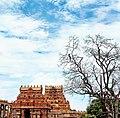 Brihadeeswara Temple -Thanjavur-Tamil Nadu -DSC 0001.jpg