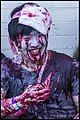 Brisbane Zombie Walk 2014-54 (15646288809).jpg