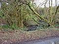 Brook near Cwm-coy, Blaenpennal - geograph.org.uk - 1032570.jpg