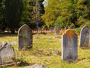 Brookwood cemetery 19