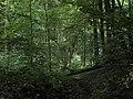Bubovice-Srbsko - panoramio (41).jpg