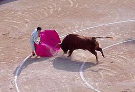 Taurus homme datant taureau femme